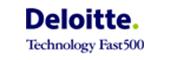 Portage salarial Deloitte 500